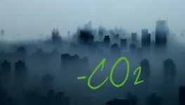crediti-di-carbonio1_700x400